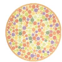 ujian percubaan buta warna dan teori bahagian